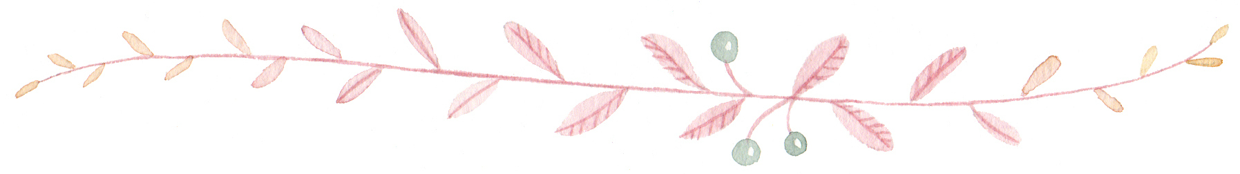 divider-vine-cropped2