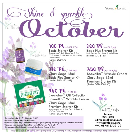 ic-okt-promotion