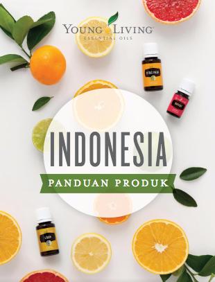 Panduan Produk Indonesia