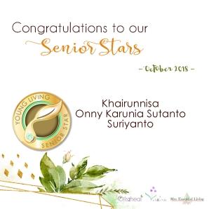 nov senior stars